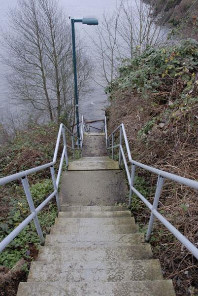 [Image: steps.jpg]