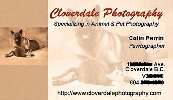 IMAGE: http://www.shuttertalk.com/gallery/albums/userpics/10060/clover-card%20edit.jpg