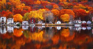 Opt-Autumn-Reflections