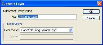 Duplicate Layer