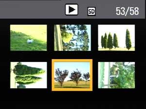 Multi-image view